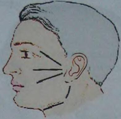 Схема типичных разрезов на