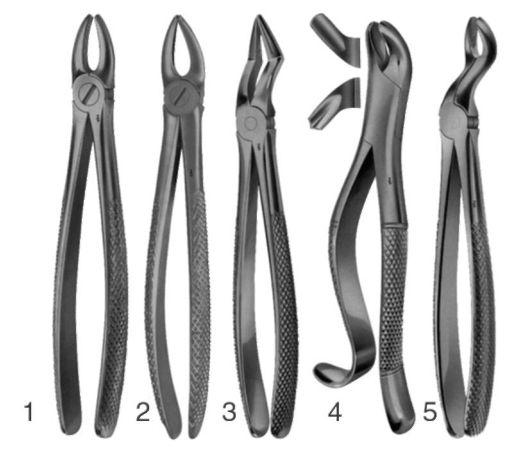 Зубные щипцы, или анатомические щипцы, — медицинские инструменты, используемые в хирургической стоматологии для экстракции (удаления) зубов. Для удаления различных видов зубов используются различные виды щипцов.